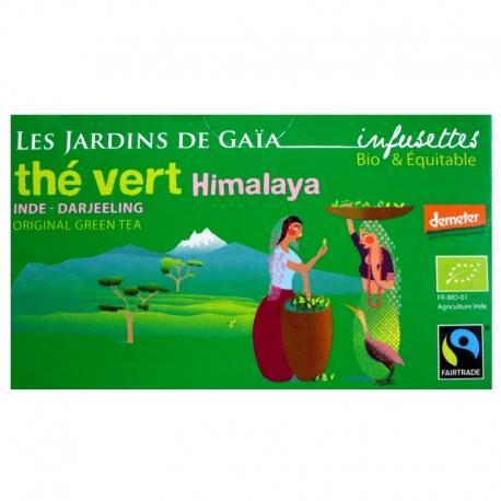 infusettes-the-vert-bio-himalaya-jardins-gaia